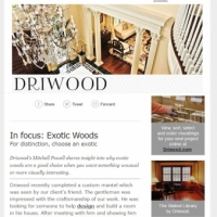 Driwood-newsletter-example